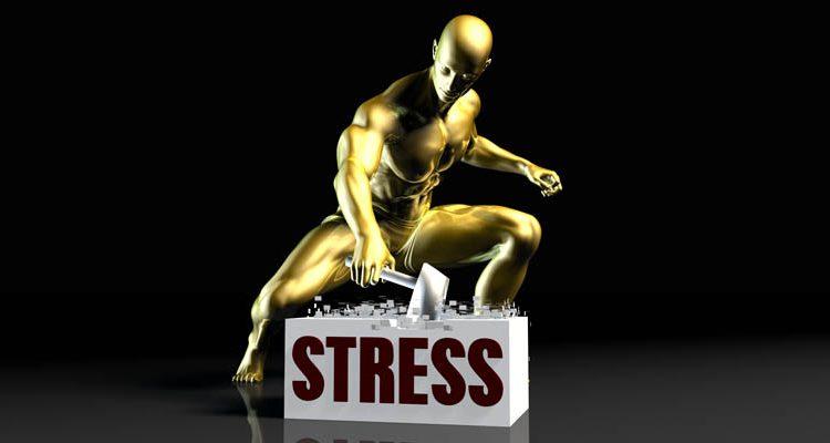 A Roller Leveler Removes Material Stresses